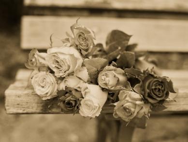 roses-bench-bunch-lying-park-46430578_InPixio